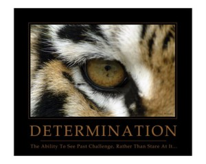 neil-bramley-determination-eye-of-the-tiger